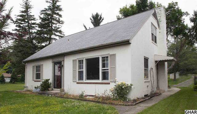 379 Middletown Road, Hummelstown, PA 17036 (MLS #10303854) :: The Joy Daniels Real Estate Group