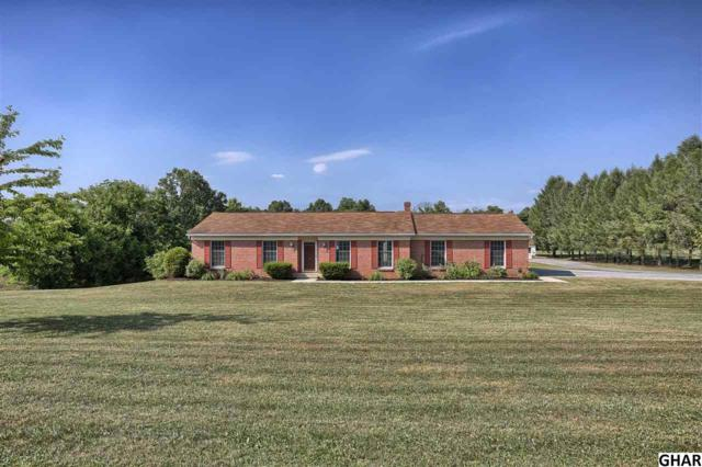 95 Stone Mill Road, Hummelstown, PA 17036 (MLS #10303864) :: The Joy Daniels Real Estate Group