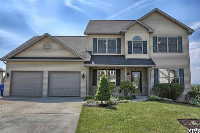 45 Manada Creek Circle, Carlisle, PA 17013 (MLS #10303867) :: The Joy Daniels Real Estate Group