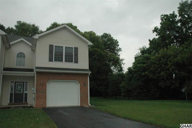 102 Sable Drive, Carlisle, PA 17013 (MLS #10304497) :: The Heather Neidlinger Team With Berkshire Hathaway HomeServices Homesale Realty