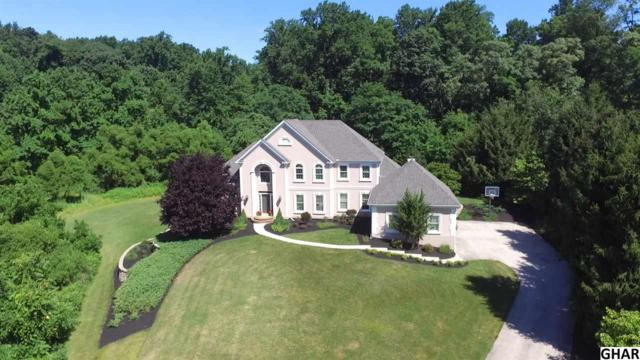 621 Whitetail Drive, Lewisberry, PA 17339 (MLS #10304803) :: Teampete Realty Services, Inc