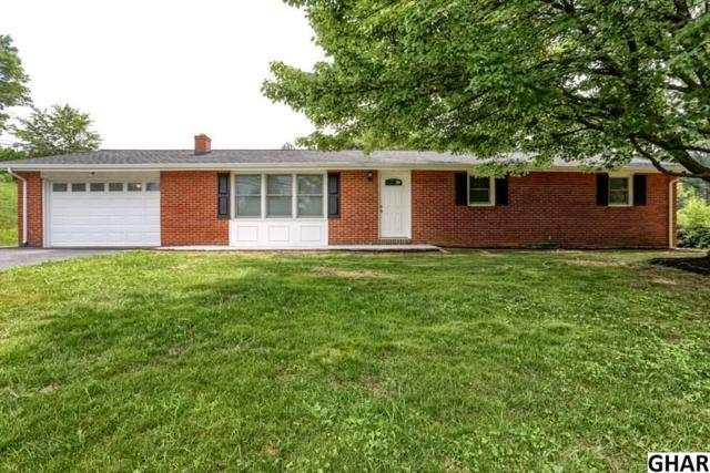 60 Grandview Road, Hummelstown, PA 17036 (MLS #10305196) :: Teampete Realty Services, Inc