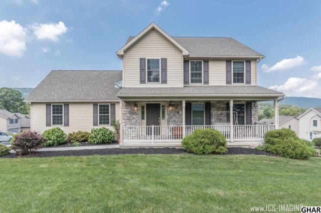 251 Whitetail Terrace, Marysville, PA 17053 (MLS #10305208) :: The Heather Neidlinger Team With Berkshire Hathaway HomeServices Homesale Realty