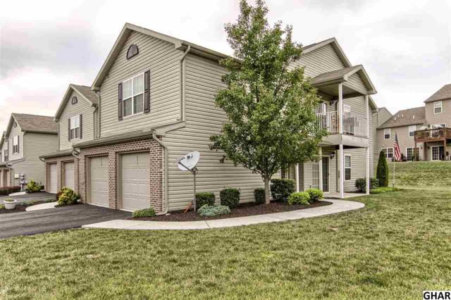 244 Osprey Lane, Hummelstown, PA 17036 (MLS #10305292) :: Teampete Realty Services, Inc