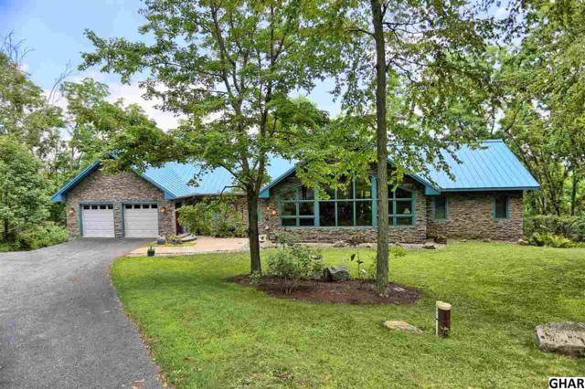 75 Kathryn Drive, New Bloomfield, PA 17068 (MLS #10305360) :: Teampete Realty Services, Inc