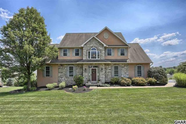 43 Briar Rose Trail, Elizabethtown, PA 17022 (MLS #10306107) :: The Joy Daniels Real Estate Group