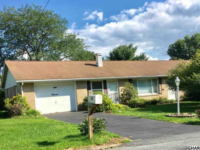 11 Randall Drive, Enola, PA 17025 (MLS #10306301) :: The Joy Daniels Real Estate Group