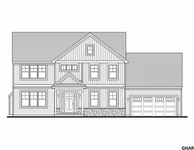 133 Scenic Ridge Rd., Hummelstown, PA 17036 (MLS #10306330) :: The Joy Daniels Real Estate Group