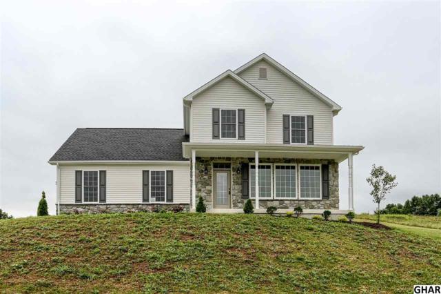 103 Pintail Avenue, Duncannon, PA 17020 (MLS #10306378) :: The Joy Daniels Real Estate Group