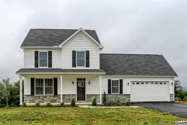 104 Pintail Avenue, Duncannon, PA 17020 (MLS #10306379) :: The Joy Daniels Real Estate Group