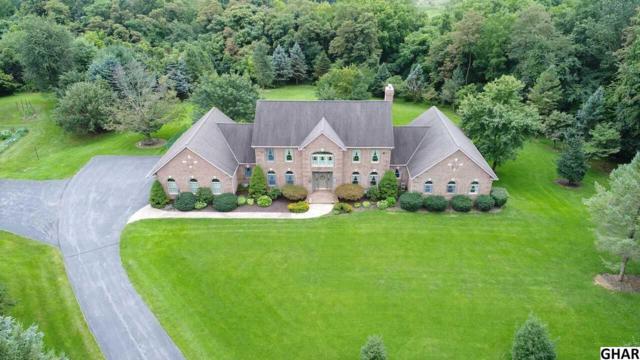 5 Fox Run, Hummelstown, PA 17036 (MLS #10306381) :: The Joy Daniels Real Estate Group