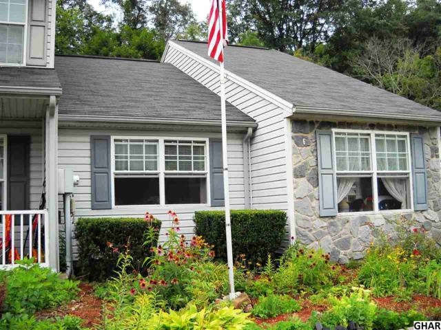 59 Petersburg Lane, Duncannon, PA 17020 (MLS #10306390) :: The Joy Daniels Real Estate Group