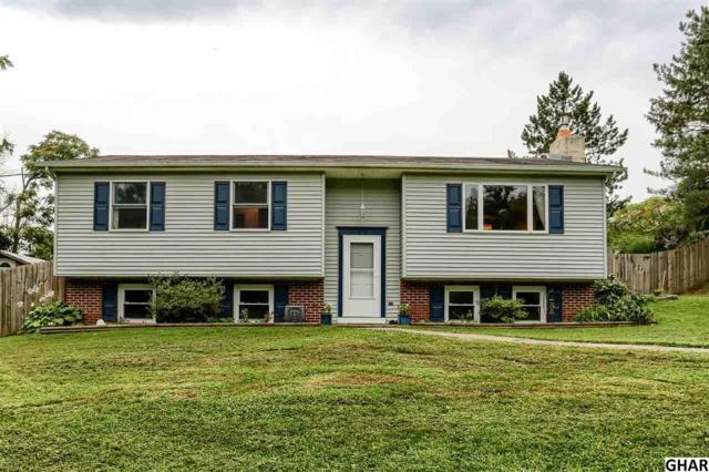 170 Fleisher Road, Marysville, PA 17053 (MLS #10306400) :: The Joy Daniels Real Estate Group