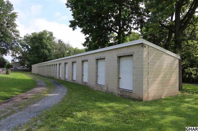 727 E Main Street, Middletown, PA 17057 (MLS #10306451) :: The Joy Daniels Real Estate Group