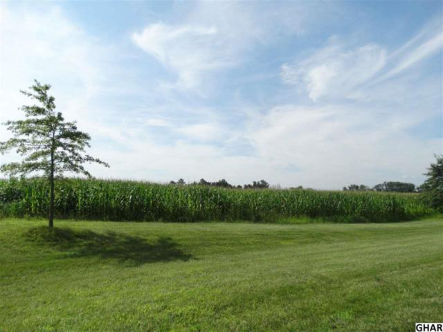 Lot 16 Walton Drive, Carlisle, PA 17015 (MLS #10306453) :: The Joy Daniels Real Estate Group