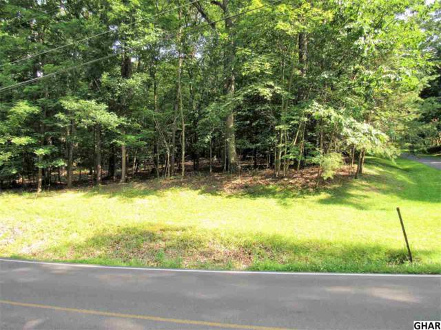 830 New Valley Road, Marysville, PA 17053 (MLS #10306517) :: The Joy Daniels Real Estate Group