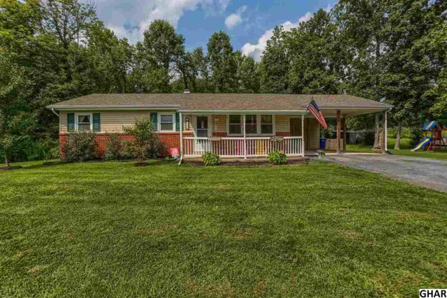 646 Old Quaker Road, Lewisberry, PA 17339 (MLS #10306567) :: The Joy Daniels Real Estate Group