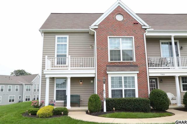 701 Stag, Hummelstown, PA 17036 (MLS #10306621) :: The Joy Daniels Real Estate Group