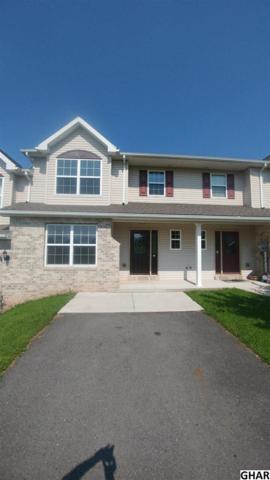 40 Dustin Drive, Halifax, PA 17032 (MLS #10306630) :: CENTURY 21 Core Partners