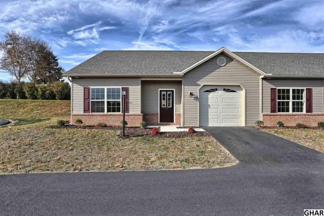 102 Eric Drive, Harrisburg, PA 17111 (MLS #10306677) :: The Joy Daniels Real Estate Group
