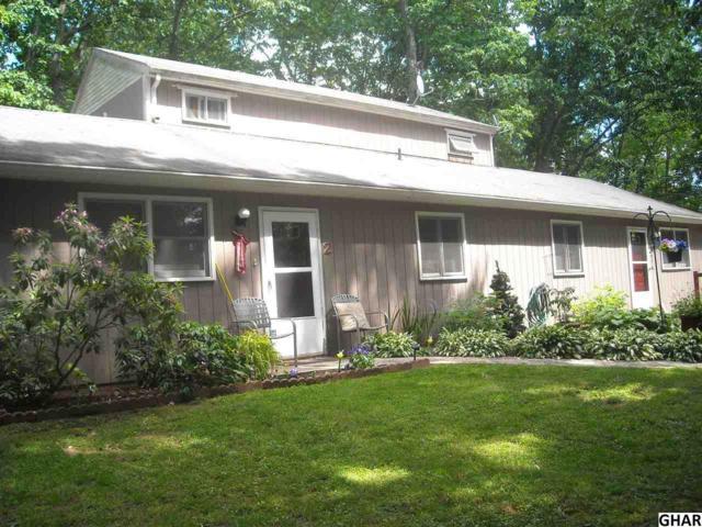 58 Hoffman Rd, Duncannon, PA 17020 (MLS #10306685) :: The Joy Daniels Real Estate Group