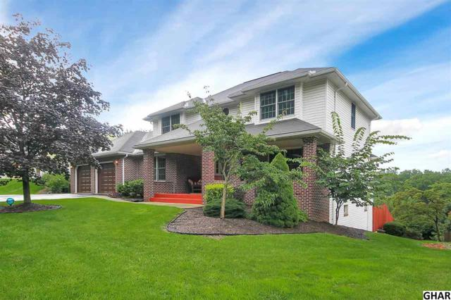 1207 Jill Drive, Hummelstown, PA 17036 (MLS #10306689) :: The Joy Daniels Real Estate Group