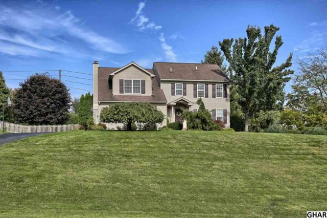 991 Overlook Drive, Hummelstown, PA 17036 (MLS #10307839) :: Teampete Realty Services, Inc