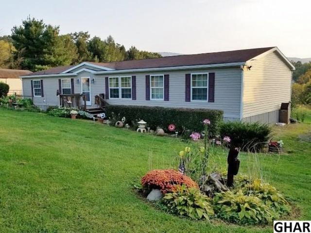 1734 Pisgah Road, Landisburg, PA 17040 (MLS #10307864) :: Teampete Realty Services, Inc