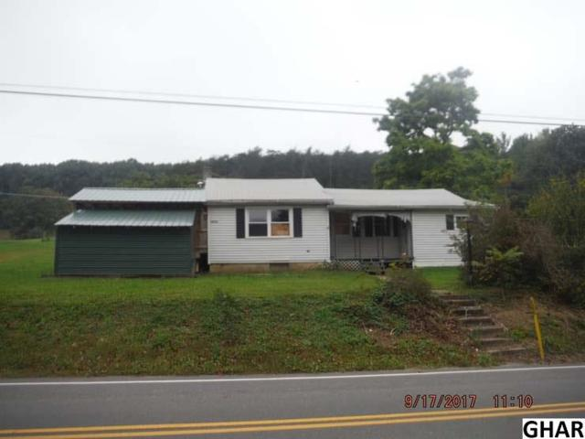 12270 Buffalo Trace Road, Millerstown, PA 17062 (MLS #10307903) :: Teampete Realty Services, Inc