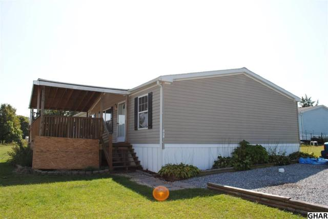 172 Rye Lane, Shermans Dale, PA 17090 (MLS #10308006) :: Teampete Realty Services, Inc