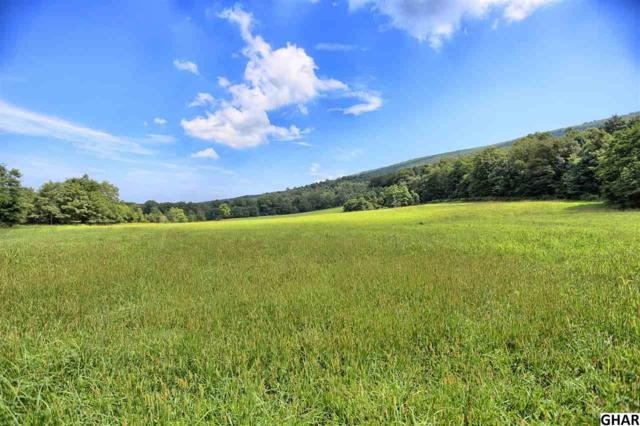 00 Couchtown Rd, Loysville, PA 17047 (MLS #10308014) :: Teampete Realty Services, Inc