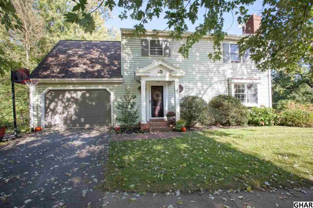 110 Circle Drive, Hummelstown, PA 17036 (MLS #10308021) :: Teampete Realty Services, Inc