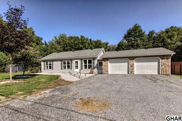 21 Paradise Drive, Carlisle, PA 17013 (MLS #10308027) :: Teampete Realty Services, Inc