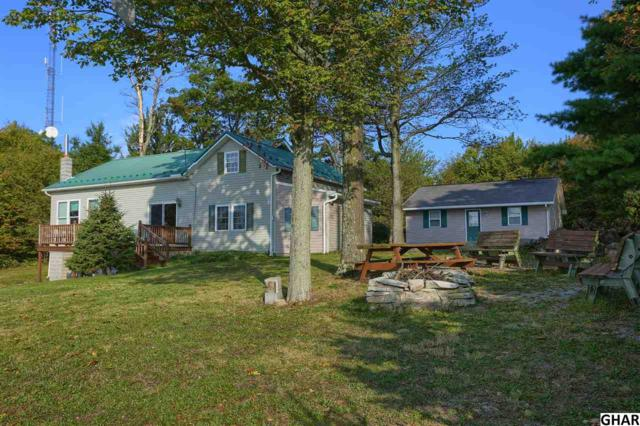 29 Mountain Top Drive, Newburg, PA 17240 (MLS #10308072) :: Teampete Realty Services, Inc