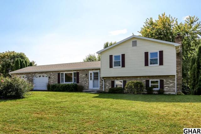 308 Glenn Ave, Boiling Springs, PA 17007 (MLS #10308075) :: Teampete Realty Services, Inc