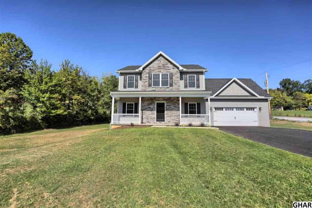 1636 Pisgah State Road, Shermans Dale, PA 17090 (MLS #10308076) :: Teampete Realty Services, Inc