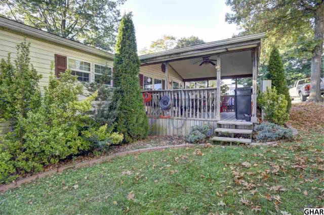 174 Jo-Lee Drive, Middletown, PA 17057 (MLS #10308439) :: The Joy Daniels Real Estate Group