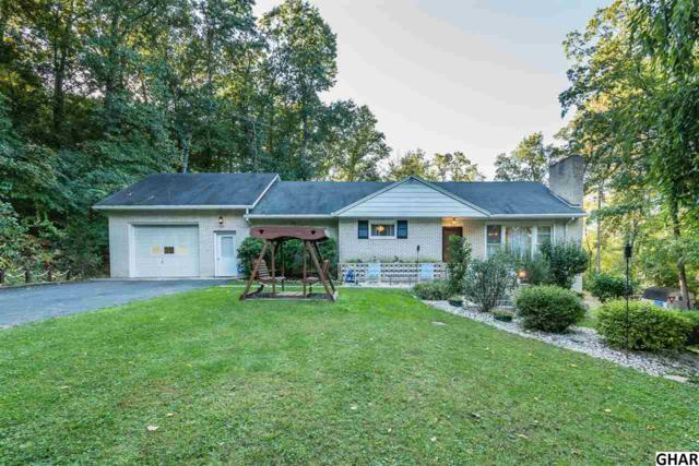 455 Fickes Rd, Dillsburg, PA 17019 (MLS #10308577) :: The Joy Daniels Real Estate Group
