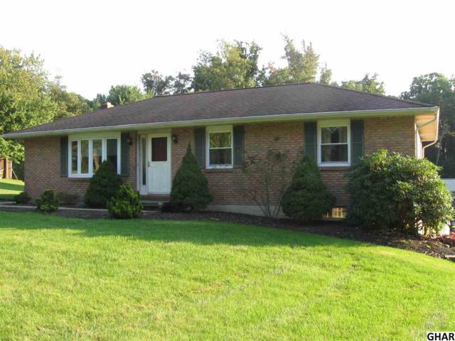 239 Lawn Rd, Palmyra, PA 17078 (MLS #10308796) :: The Joy Daniels Real Estate Group