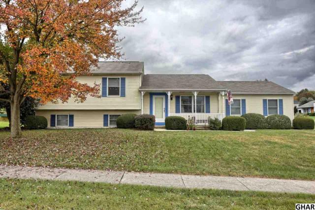 8807 Mckinley Court, Hummelstown, PA 17036 (MLS #10308829) :: The Joy Daniels Real Estate Group