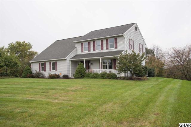 6 Merion Lane, Hummelstown, PA 17036 (MLS #10309050) :: The Joy Daniels Real Estate Group