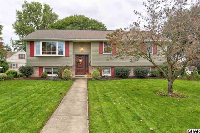224 Brian Avenue, Elizabethtown, PA 17022 (MLS #10309088) :: The Joy Daniels Real Estate Group