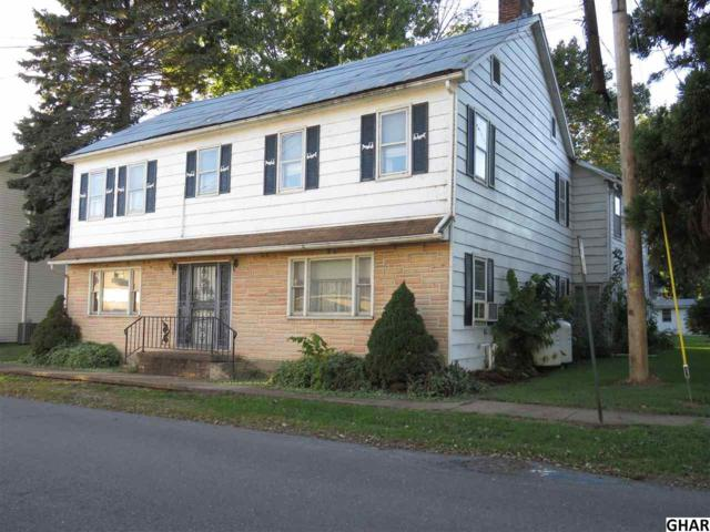 600 N Front Street, Liverpool, PA 17045 (MLS #10309103) :: The Joy Daniels Real Estate Group