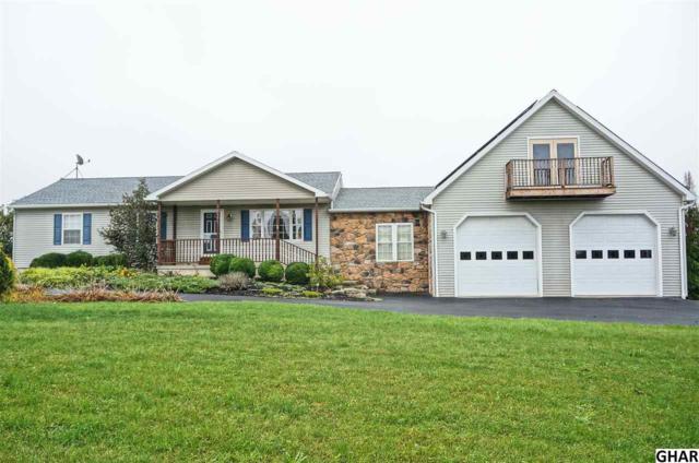 8521 Middle Ridge Road, Newport, PA 17074 (MLS #10309124) :: The Joy Daniels Real Estate Group