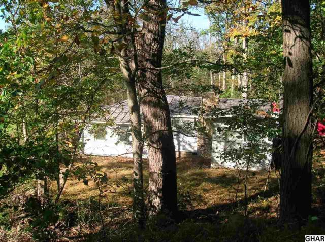 150 Jeffires Rd, Blain, PA 17006 (MLS #10309125) :: The Joy Daniels Real Estate Group