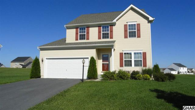 217 Berkshire Drive, Carlisle, PA 17015 (MLS #10309163) :: The Joy Daniels Real Estate Group