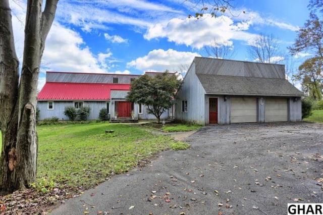 3228 Cold Storage Road, New Bloomfield, PA 17068 (MLS #10309164) :: The Joy Daniels Real Estate Group