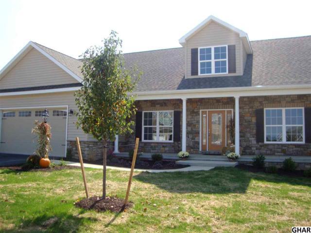 841. Tamanini Way, Mechanicsburg, PA 17055 (MLS #10309177) :: The Joy Daniels Real Estate Group