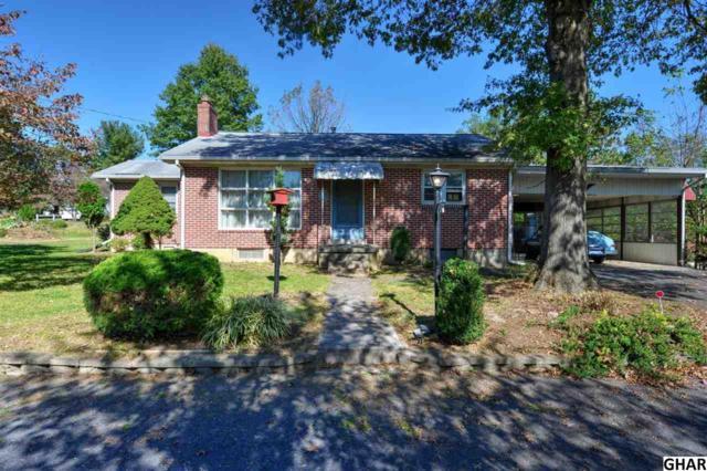116 Hummel Lane, Hummelstown, PA 17036 (MLS #10309202) :: The Joy Daniels Real Estate Group