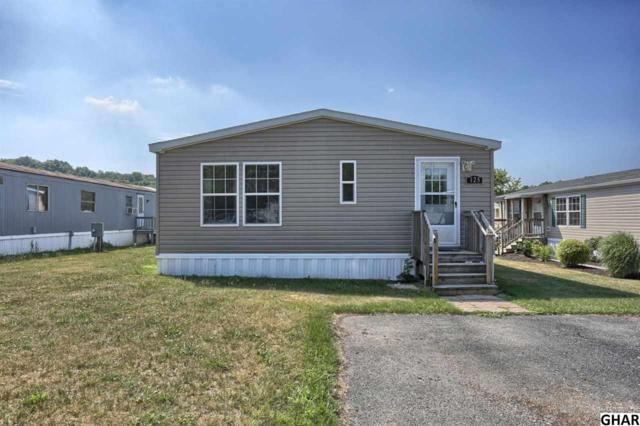 125 Decatur, Grantville, PA 17028 (MLS #10309204) :: The Joy Daniels Real Estate Group